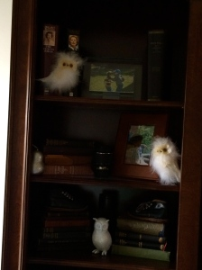 Bookcase Close Up Owls