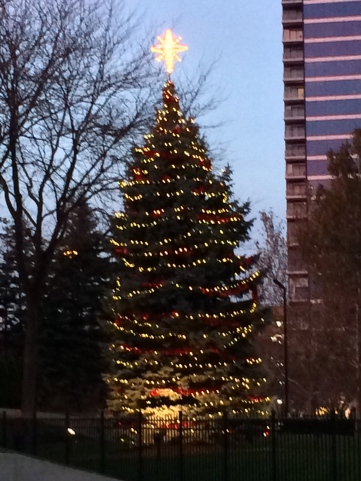 Gerald Ford Light Tree